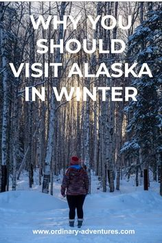 A person faces a snowy forest at sunset away from the camera. They are wearing a bright multicolored sweater and a red hat. Text reads: Why you should visit Alaska in winter Juneau Alaska, Alaska Travel, Alaska Winter, Visit Alaska, Kenai Fjords, Snowy Forest, See The Northern Lights, Winter Hiking, Winter Activities