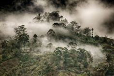 A misty morning in Goroka, Eastern Highlands Province, Papua New Guinea... mountains & mist are quite the site!