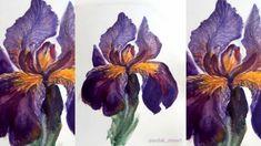 Watercolor Art Diy, Watercolor Brushes, Watercolour Tutorials, Shades Of Violet, Iris Flowers, Community Art, Art Techniques, Artist At Work, Painting Inspiration