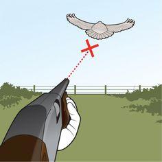 10 Tips for Better Dove Hunting