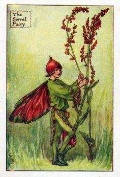 Cicely Mary Barker ~ The Sorrel Fairy