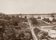 Viaduto do chá e plantação de chá abaixo, Vale do Anhangabaú, 1897.