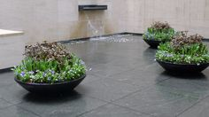 Centurion by Greening Stone - A Landscape Design Company in NYC. The company also design courtyards.