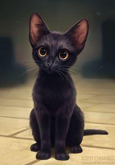Black Cat Art, Cute Black Cats, Photo Chat, Cute Animal Drawings, Cat Wallpaper, Warrior Cats, Cat Drawing, Beautiful Cats, Crazy Cats