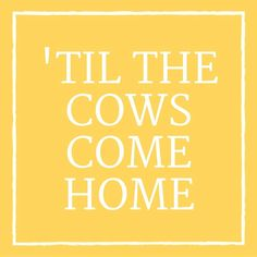 24 Phrases Only Southerners Use: 'Til the Cows Come Home