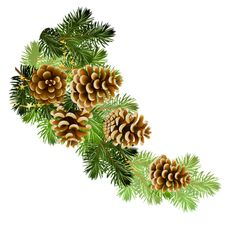 Pine and pine cones branch border clip art Christmas Graphics, Christmas Clipart, Christmas Printables, Christmas Art, All Things Christmas, Vintage Christmas, Christmas Holidays, Christmas Wreaths, Christmas Decorations