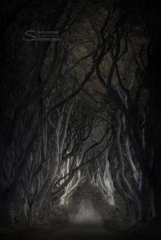 Lasciate ogni speranza, voi ch'entrate by Tomek Jungowsk i— Dante, Divina Commedia, I 3, 9