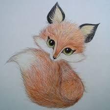 Resultado de imagem para fox drawing
