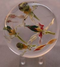 Paul STANKARD Lady Slipper ORCHIDS Lg EXPERIMENTAL Glass PAPERWEIGHT. Asking £1164