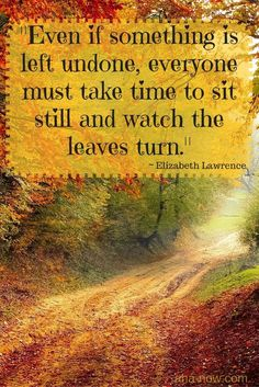 """""""Even if something is left undone, everyone must take time to sit still and watch the leaves turn."""" ~ Elizabeth Lawrence"""