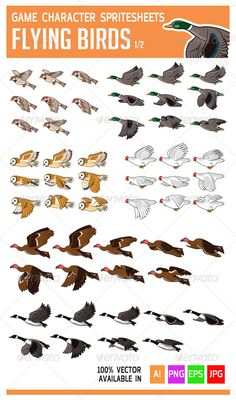 Flying Bird Game Character Sprite  #GraphicRiver         See the preview of the animation at:  .fastswf /ir7N80I  	 It is a character spritesheets for creating a 2D platformer, shooter or sidescroller game. The birds are: sparrow, vulture, duck, goose, chicken,and owl.  	 This asset is 100% vector available in AI, EPS, ready to use JPG and transparent PNG, so it is editable.  	 Do not hesitate to contact me at iamgagu@hotmail  if you need help.  	 Thanks for buying and don't forget to rate…