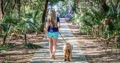 Furry best friends deserve a getaway, too! Though dogs aren't allowed on our scenicbeaches, your four-legged companions can still have funon Tybee Island. Follow these guidelines to help ensure thatyou and your pup enjoy your vacationin our friendly beachside town. DO: Book dog friendly accommodations – Many of Tybee Island's lodging options offer pet friendly …
