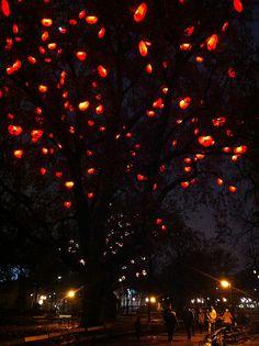 Christmas Hearts, Vienna