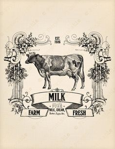 fresh milk sign - Поиск в Google