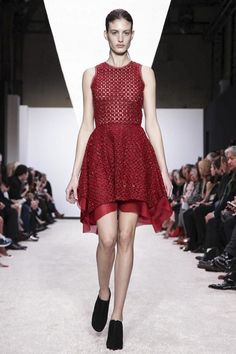 Giambattista Valli Ready To Wear Fall Winter 2014 Paris