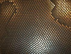 Bronze Viper