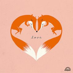 #foxes