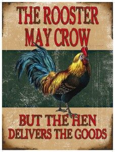 Rooster May Crow, Funny Comedy Chicken, House Pub, Medium Metal/Tin Sign Picture | eBay