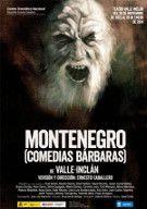 Montenegro (Teatro Valle-Inclán). Funciones accesibles: 15, 16 y 17 enero 2014.