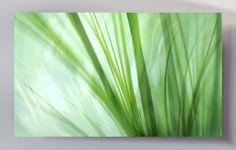 http://www.artefactum-shop.de/alle-kunstwerke/natur-pflanzen/lw30-dancing-grasses/