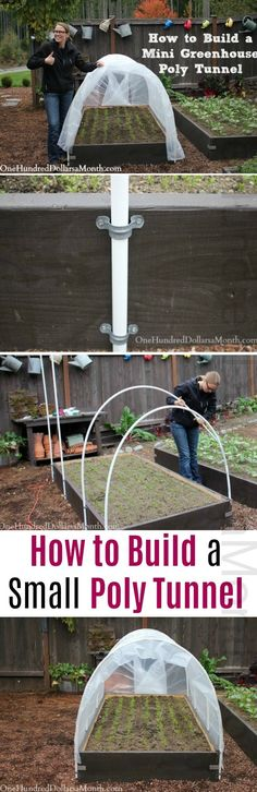 How to Build a Small Poly Tunnel how to build a greenhouse how to protect your seedlings how to protect seedlings from frost mini greenhouse ideas ply tunnel ideas garden. Build A Greenhouse, Greenhouse Gardening, Greenhouse Ideas, Greenhouse Vegetables, Homemade Greenhouse, Vegetables Garden, Small Polytunnel, Organic Gardening, Gardening Tips