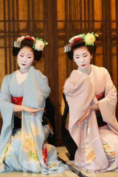 Ayano and Ichino of Pontocho as maiko by Crowsdesign - blogThey're now geiko: Ayano & Ichino