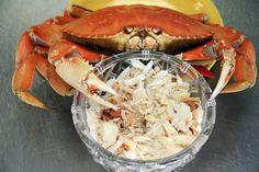 40 Dungeness Crab Recipes Ideas