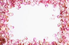 Rose petals | by Paris in Four Months