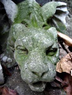 Mossy Gargoyle in my secret Winthrop Street, Oakland, Pittsburgh Gothic Garden, Chimera, Graveyards, Dark Skies, Old Master, Stone Carving, Mythical Creatures, Beautiful Creatures, Garden Art