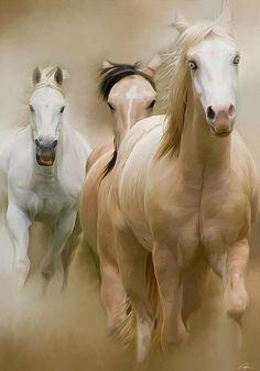 Horses, horses and more horses!!! Powerful, beautiful, elegant animals.:Curtilol - Como fazer