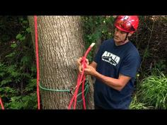 When you have your rope set, you then need to begin thinking about how to access the tree. Certified arborist Mark Chisholm shares techniques for rigging a t. Tree Cutter, Survival Knots, Tree Surgeons, Tree Felling, Tree Pruning, Climbing Rope, Rappelling, Rigs, Beautiful Gardens