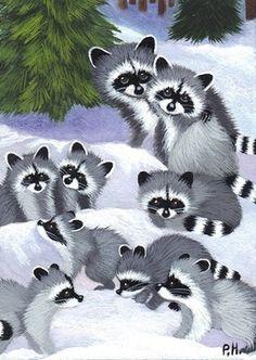 family of raccoons Raccoon Art, Cute Raccoon, Racoon, Cute Animal Drawings, Cute Animal Pictures, Cute Cartoon Animals, Cute Animals, Animals For Kids, Baby Animals
