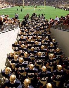 Notre Dame Football Team taking the files Notre Dame Football, Nd Football, College Football Teams, Football Season, Football Quotes, Sports Teams, College Sport, Ncaa College, Sports Art