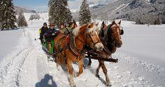 Pferdeschlittenfahrt in Obertauern