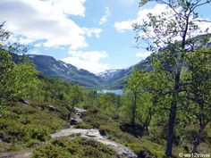 Aurlandsdalen: hiking in Norway's Grand Canyon! From Østerbro to Vassbygdi this is one of Norway's classic day hikes, suitable for most hikers