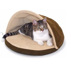 A heated cat bed with a flexible hood. Creates a secure, warm place for cats to cuddle up. Warms the bed surface to pleasing temperature for cats. I just purchased this for my kitty. he stays so cold. I hope he likes it. Hemingway Cats, Heated Cat Bed, Short Haired Dogs, Outdoor Cats, Chihuahua Love, Pet Beds, Pet Care, Fur Babies, Your Pet