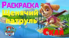 Щенячий патруль Скай┃ Раскраска для детей