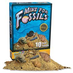 Mine For Fossils, Science & Nature, The Earth and Stars - Mindware