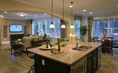 Sierra Model Kitchen & Great Room