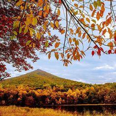 Scenic Fall drives