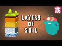 You know that SOIL has different layers to it, right? The soil has a lot more going on inside than what you just see on the top! Binocs as take. Grade 3 Science, Science Lessons, Earth Science, Science Classroom, Teaching Science, Teaching Kids, Kindergarten Activities, Science Activities, Science Projects