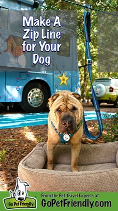 Keeping you dog safe at your campsite, in the back yard, or at the park is a cinch with this easy DIY zip line! #camping