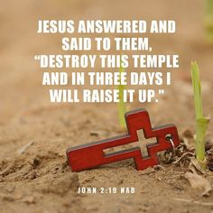 Image result for John 2:13-22