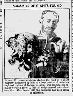 """Your Daily Giant  8/18/2013   Today's Daily Giant continues the story of explorer Paxson Hayes and the Giants of Sonora. In this photo from the San Jose News, December 31, 1935 pg 12, the description is given,   """"Paxson Hayes, explorer, studies the head of a giant mummy discovered by him in a deep cave hitherto unexplored regions of Sonora, Mexico. The mummified remains were of a race 7 1/2 feet tall and preserved in excellent condition. Corn found with the mummies has been given to…"""