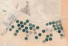 Satellite image of farm near Riad in Saudi Arabia