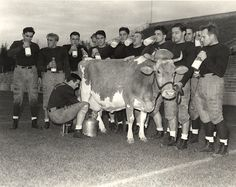 Publicity Photo of Football Team Drinking Milk, 1937 by Michigan State University Archives, via Flickr
