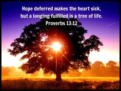 hope deferred makes the heart sick but a longing fulfilled is a tree of life - Google Search