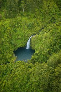 "Maui waterfall and pool - helicopter aerial. One of the numerous waterfalls in the Hana rain forest By IronRodArt - Royce Bair (""Star Shooter"") on Flickr"