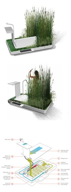 a shower that filters and reuses water through it's own ecosystem!