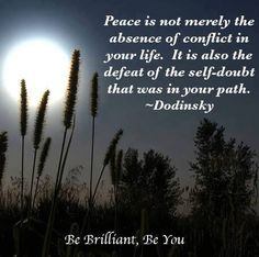 Dodinsky Quote - Peace is not merely the absence of conflict in your life...